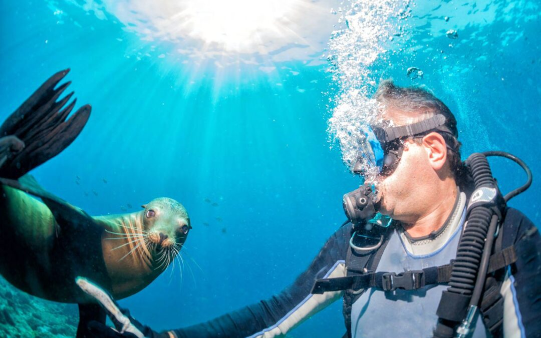 Galapagos Islands Wild Life